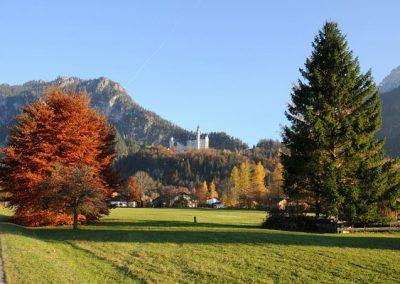 csm_DSC_7625-Neuschwanstein-im-Herbst_407e515584